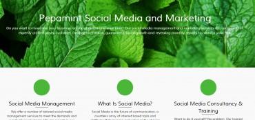 New Fresh Website Design for hellomint
